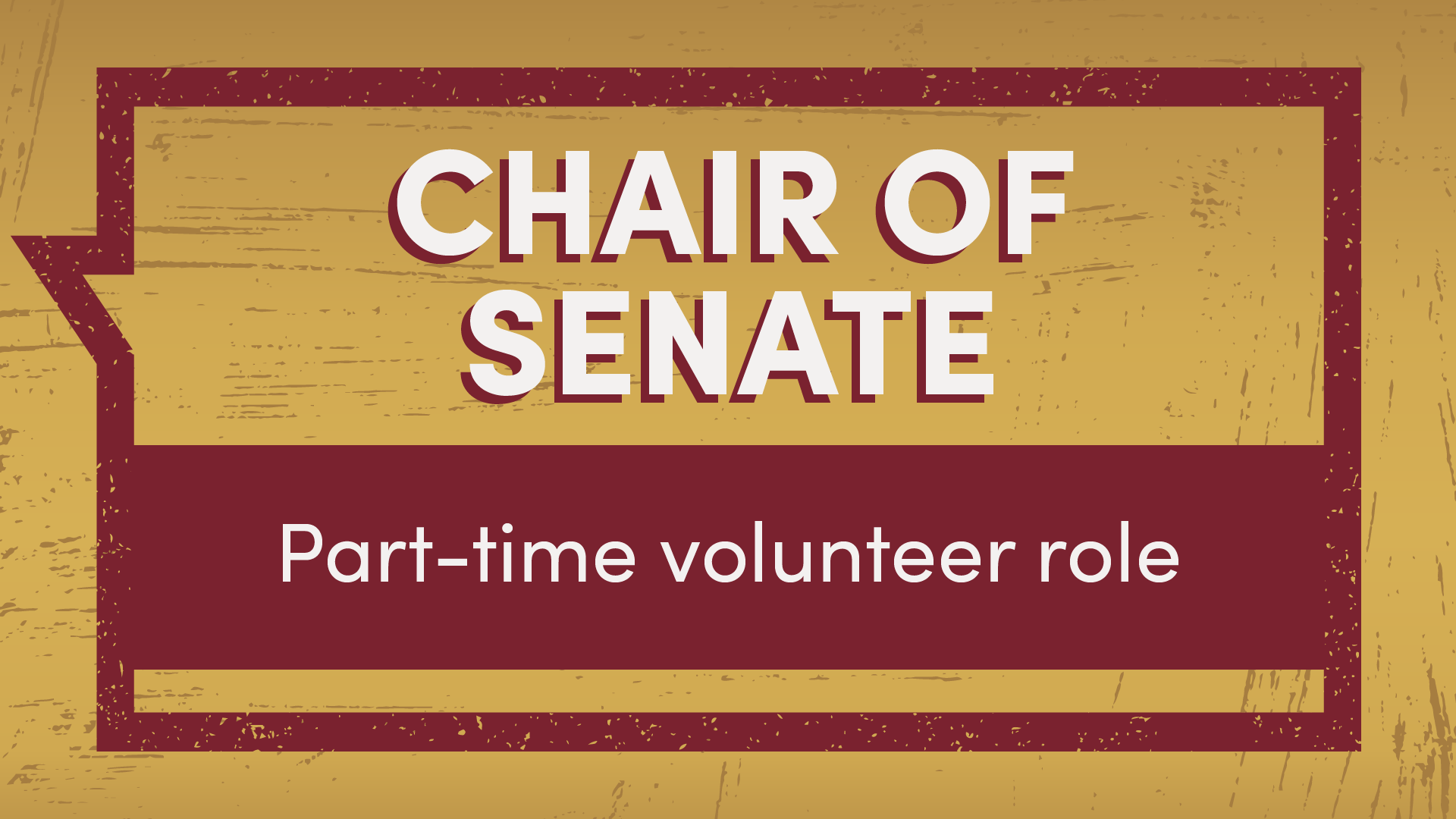 Chair of Senate part-time volunteer role