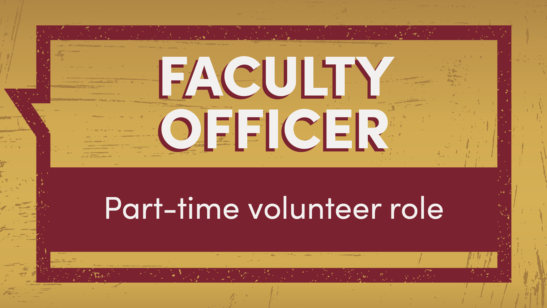 Faculty Officer part-time volunteer role