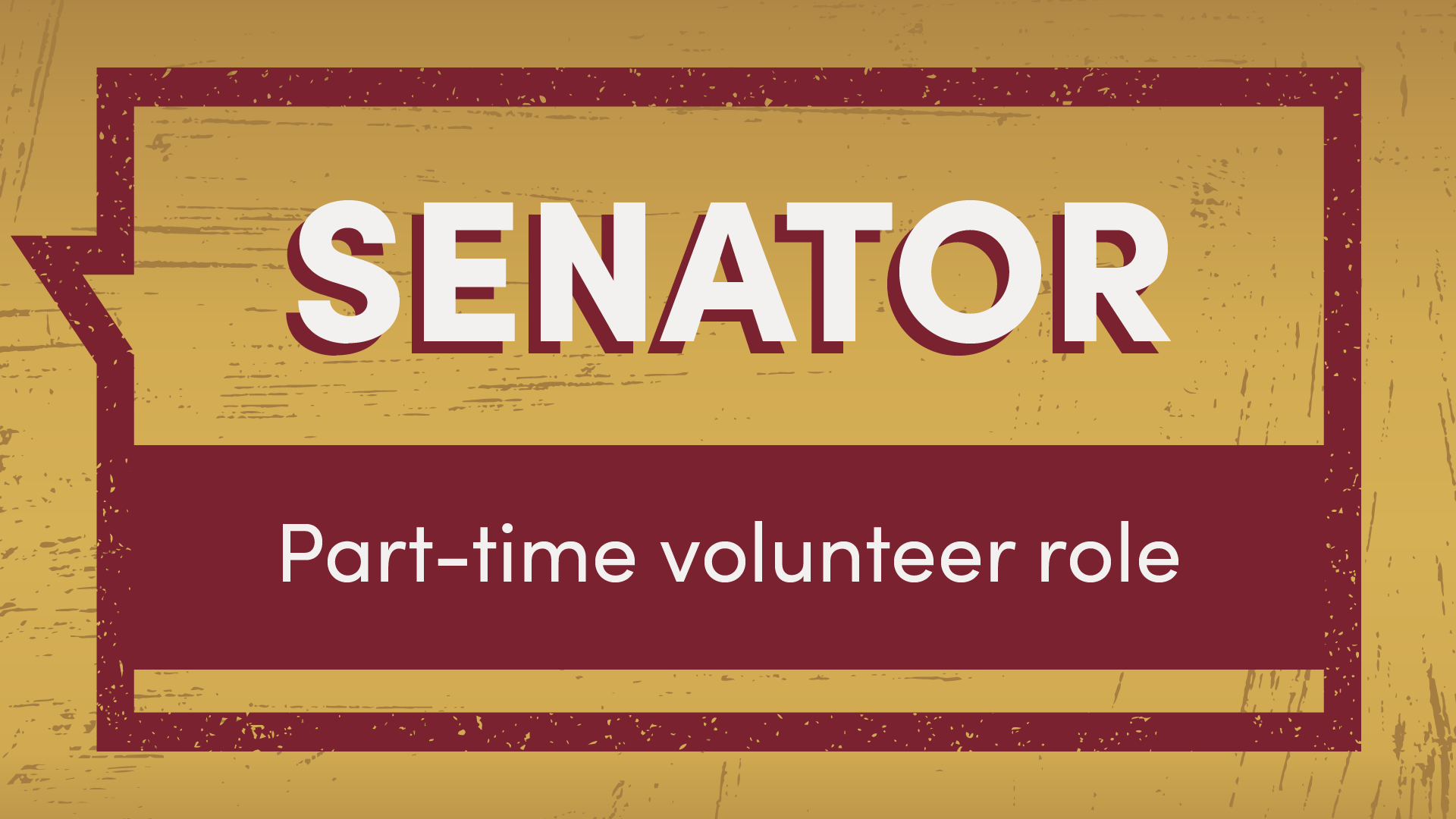 Senator part-time volunteer role