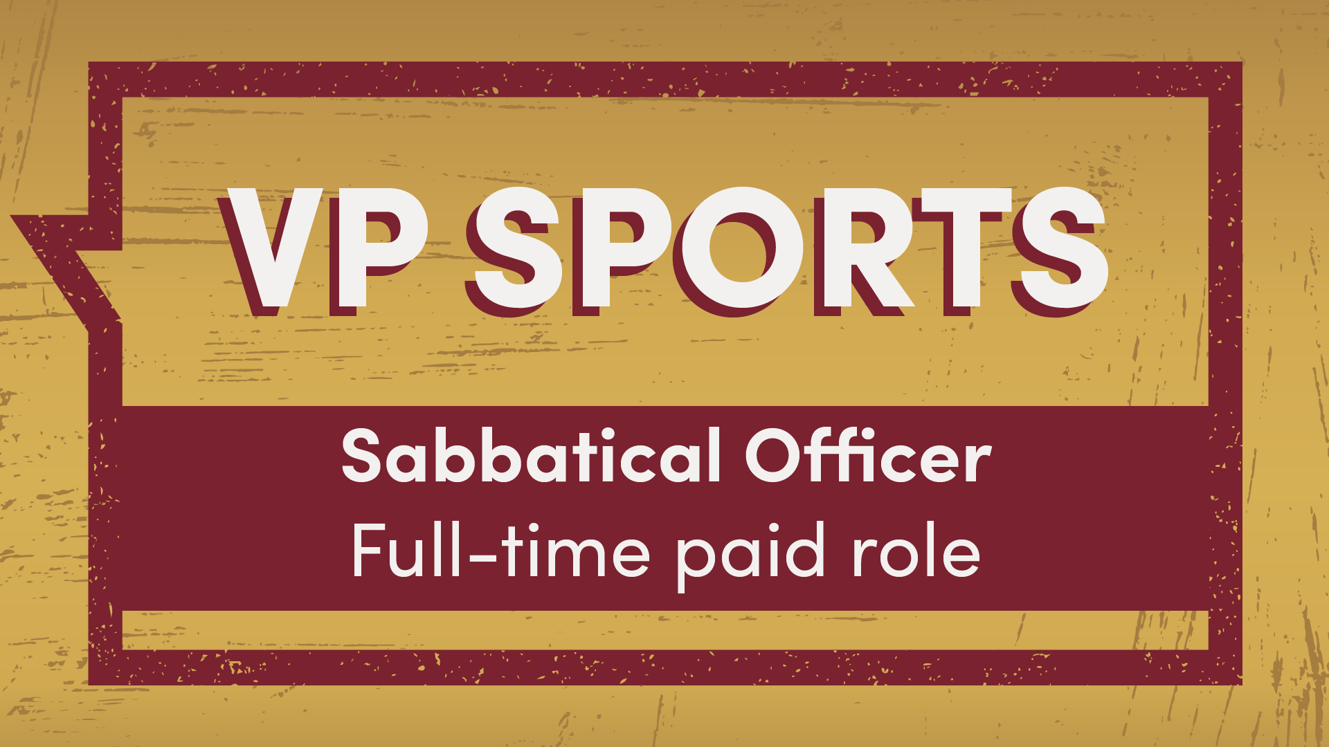 VP Sports Sabbatical Officer full-time paid role